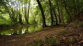 Tajemství italského parku Seveso: Co leží pod jedním z nejkrásnějších míst Evropy? - anotační foto
