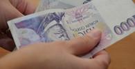 Poslanci navrhli omezení pro výplatu dávek v poukázkách, objevily se problémy - anotační obrázek