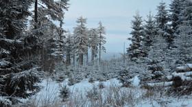 Počasí. Budou Vánoce na sněhu, či na blátě? Velká předpověď - anotační foto
