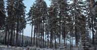 Předpověď počasí na noc a úterý 22. ledna - anotační obrázek