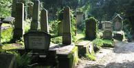 Uprchlík v Německu znásilnil stařenku přímo na hřbitově - anotační obrázek