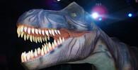 Jak vypadal předek obřích dinosaurů? Objev paleontologů je zcela nečekaný - anotační foto