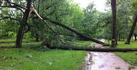 Počasí: Česko zasáhne silný vítr a mráz - anotační obrázek