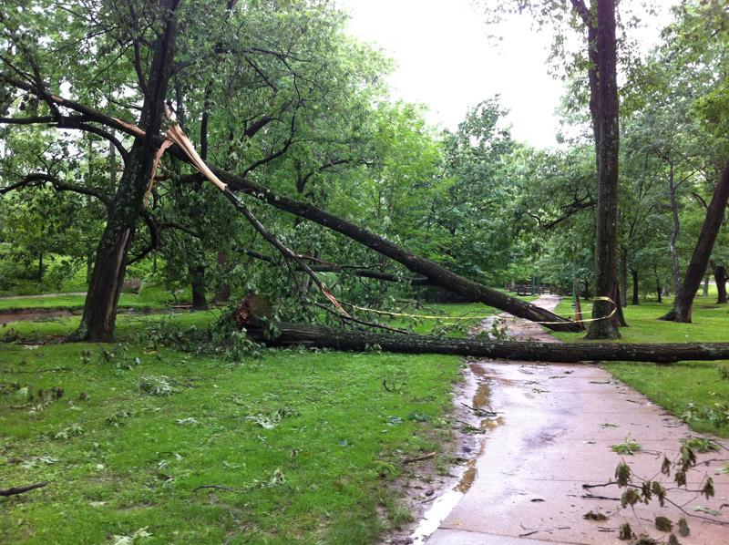 Předpověď počasí: Česko zasáhne silný vítr a mráz - anotační foto