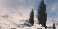 Skandinávii zasáhne silná větrná bouře, hrozí kalamita - anotační obrázek