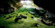 Jeskyně Moravského krasu od jejich otevření navštívilo už 25 milionů lidí - anotační obrázek