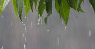 Počasí v červenci? Meteorologové nepřinášejí moc dobré zprávy - anotační obrázek