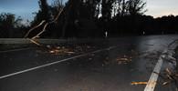 Východ Čech zpustošily bouřky. Vichr trhaly střechy, lidé bez elektřiny - anotační obrázek