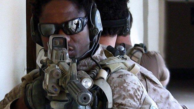 Americké námořnictvo (U.S. Navy SEALs)