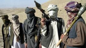 Taliban, Afghánistán