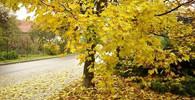 Podzim, ilustrační fotografie