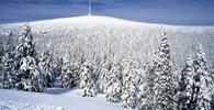 Je před námi krutá zima? Meteorologové prozradili, co říkají modely - anotační obrázek