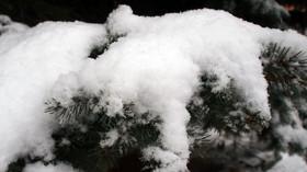 Zima 2012/2013 - první sníh