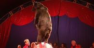 Cirkus Berousek