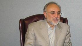 Šéf íránské agentury pro atomovou energii Alí Akbar Salehí