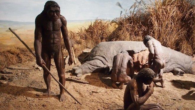 ce932d6216c Jedinečný objev  Denisovan se zkřížil s neandertálkou a měli dceru ...