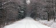 Dlouhodobá předpověď: Vydrží sníh i na na Vánoce a Nový rok? - anotační obrázek