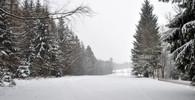 Počasí na sobotu 29. února. Sněžení, silný vítr, pozor na zmrazky - anotační foto