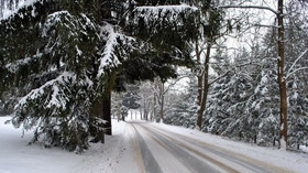 Počasí a výstraha: Do ČR vtrhne zima, sníh může lámat stromy, hrozí náledí - anotační foto