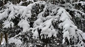 Velká předpověď počasí: Kdy dorazí ta pravá zima? - anotační foto
