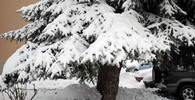 Sníh, mráz, náledí. Zima vtrhne do Česka o měsíc dřív - anotační obrázek