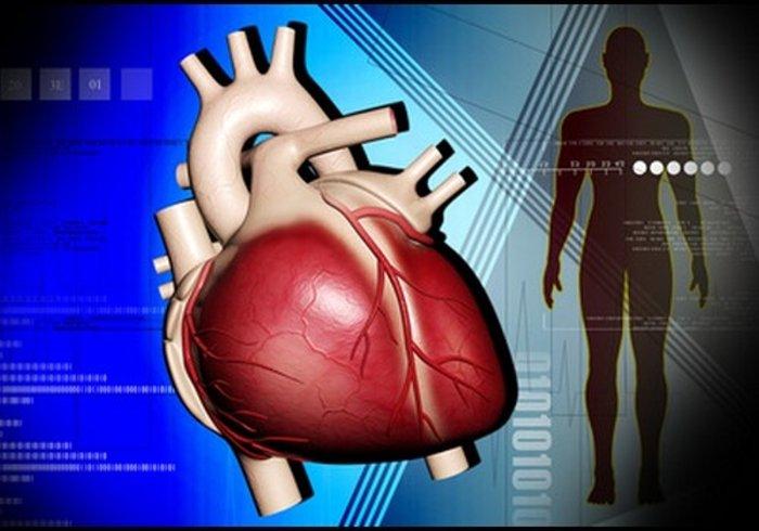 Denně ubližujete vašemu srdci. Některé návyky se raději rychle odnaučte - anotační obrázek