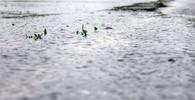 Česko zasáhly silné bouřky zasáhly. Voda vyplavila stadion i skautský tábor - anotační obrázek
