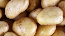 Odborníci prozradili postup, jak krájet brambory, aby byly dokonale upečené - anotační foto