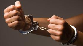 Pachatel zadržen, ilustrační fotografie