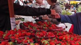 Ovoce a zelenina pro nás nejsou tak dobré, jak se říká? Nové testy odhalily nepříjemnou pravdu - anotační foto