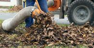 Úklid listí, ilustrační fotografie