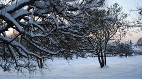 Krásy zimy, ilustrační fotografie