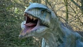 I dinosauři si zřejmě uměli užívat