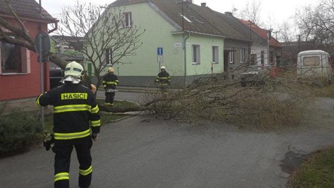 Hasiči likvidují popadané větve v Olomouckém kraji /16. března 2014/.
