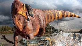 Paleontologové z univerzity v Severní Karolíně téměř dva roky rekonstruovali nalezenou kostru nového dinosaura, kterého pojmenovali Rhinorex condrupus.