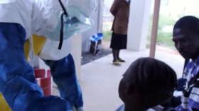 Příprava testovací vakcíny proti ebole