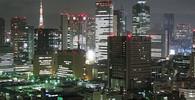 Poplach v Japonsku: Místní obchod prodal prudce jedovaté ryby - anotační obrázek