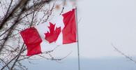 Krveprolití v Torontu: Řidič dodávkou vjel na chodník, zabil deset lidí - anotační obrázek