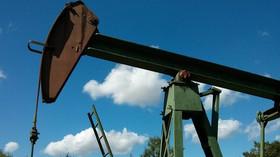Ceny ropy letí vzhůru. Proč benzin tak rapidně zdražuje? - anotační foto