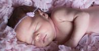Virus zika řádí v Thajsku, mezi dětmi se objevila mikrocefalie - anotační obrázek