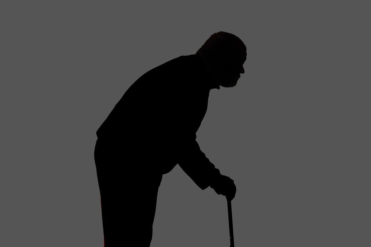 Kdy prospívají starším lidem procházky? Lékaři vyvrátili známý mýtus - anotační obrázek