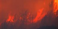 Lesní požár v Chorvatsku způsobil výbuchy min z války - anotační obrázek