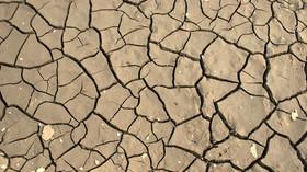 Extrémní počasí v ČR: Jaké dopady bude mít sucho? Odborníci to vidí černě - anotační foto