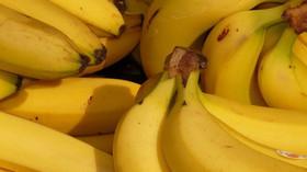 Kolik ovoce a zeleniny bychom vlastně měli sníst? Správné dávky by mohly zachránit miliony životů - anotační foto