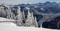 Ve Švýcarsku byli pohřbeni manželé nalezení po 75 letech - anotační obrázek