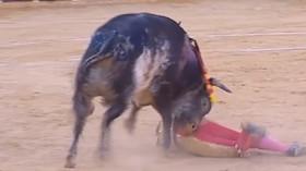 Slavného toreadora zabil býk v koridě během přímého televizního přenosu