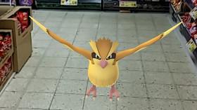 Pokémoni dokáží zpříjemnit i nudný nákup v supermarketu