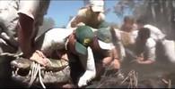 Obří krokodýl terorizoval okolí, při odchytu málem utekl