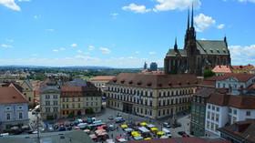 Byt v Brně obsadilo 16 netopýrů, seniorka na ně zavolala policii - anotační foto