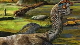 Nový dinosaurus byl objeven v Číně